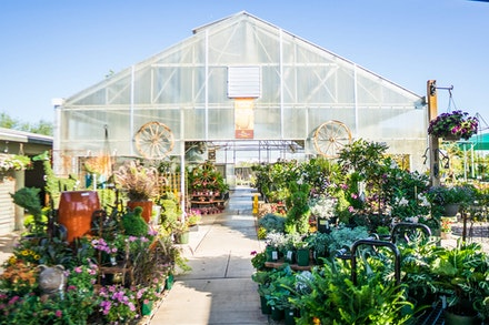 Entrance to greenhouse at SummerWinds Nursery in Glendale Arizona surrounded by plants and pottery accents outside