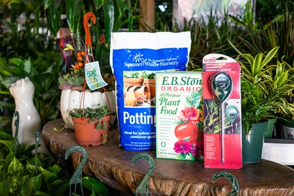SummerWinds Potting Soil, EB Stone Organics All purpose plant food, bond moisture meter surrounded by a variety of houseplants and a white cat statue