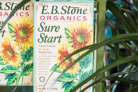 EB Stone Organics Sure Start Fertilizers near palm houseplant