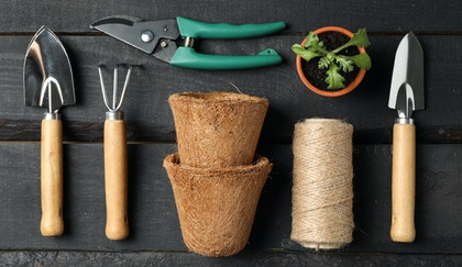 Gardening tools layed out on a wooden table