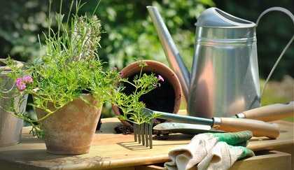 Garden accessories such as a small hand rake, pot, watering can and gloves on table