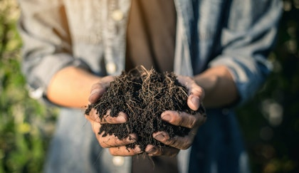 Man holding soil in his hands