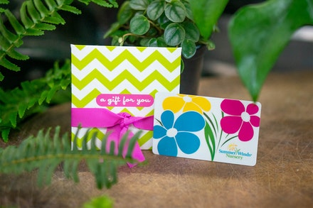 SummerWinds Nursery Gift Card & Envelope surrounded by houseplants
