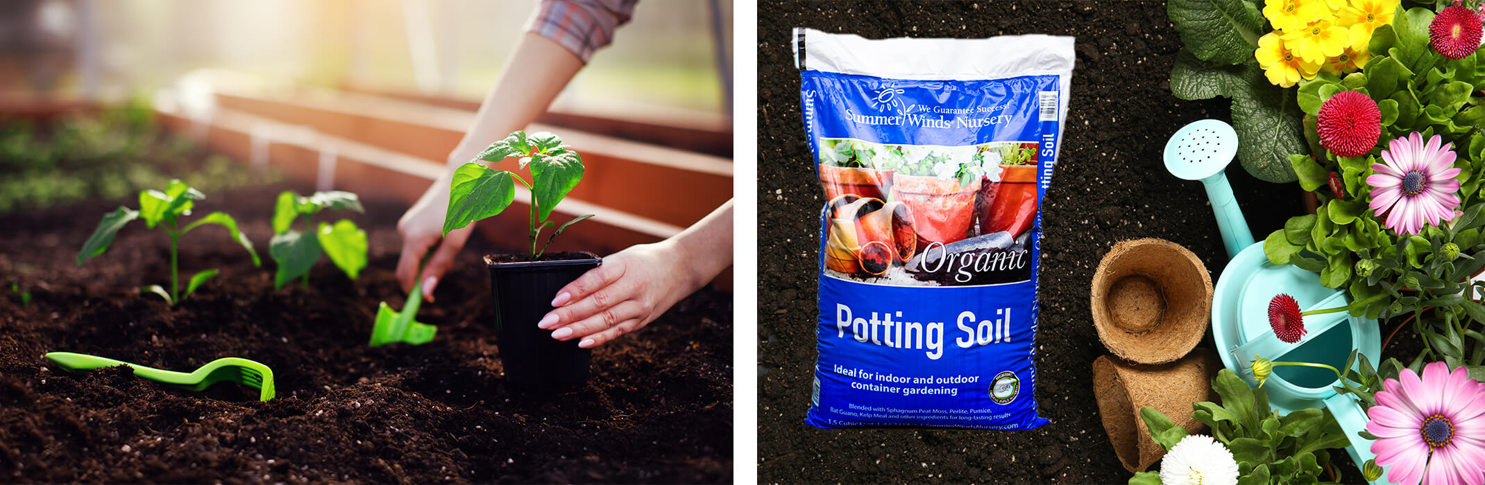 A collage of images: a woman planting new plants in a raised garden bed, a bag of SummerWinds Organic Potting Soil surrounded by fresh soil, pulp pots, a water can and flowers