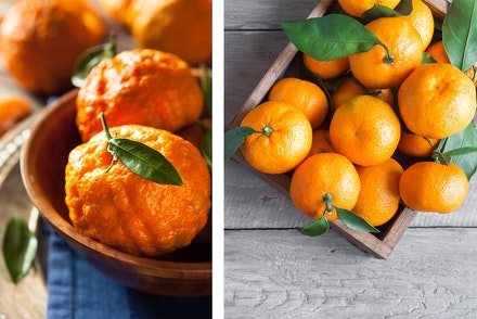 2 images: left - golden nugget mandarine oranges in a bowl, and right - celmentines in a wooden box on a wood table