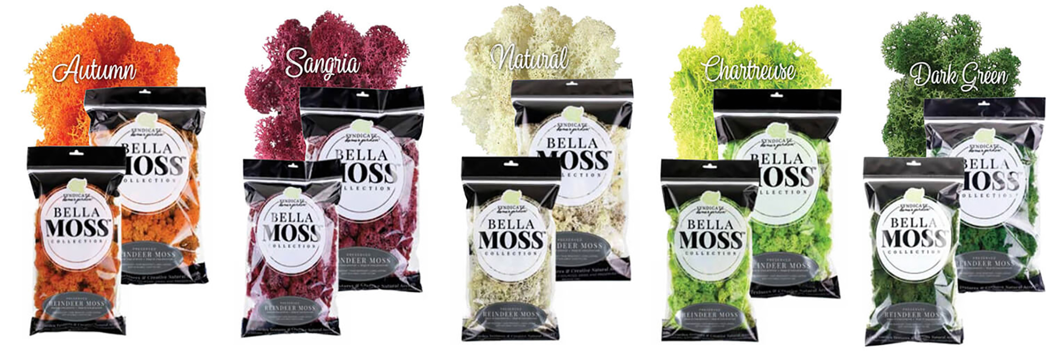Five different colors and packages of Bella Moss Collection Syndicate home garden