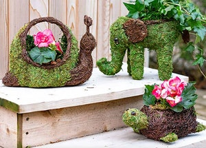 3 different moss planters: snail, elephant and a turtle