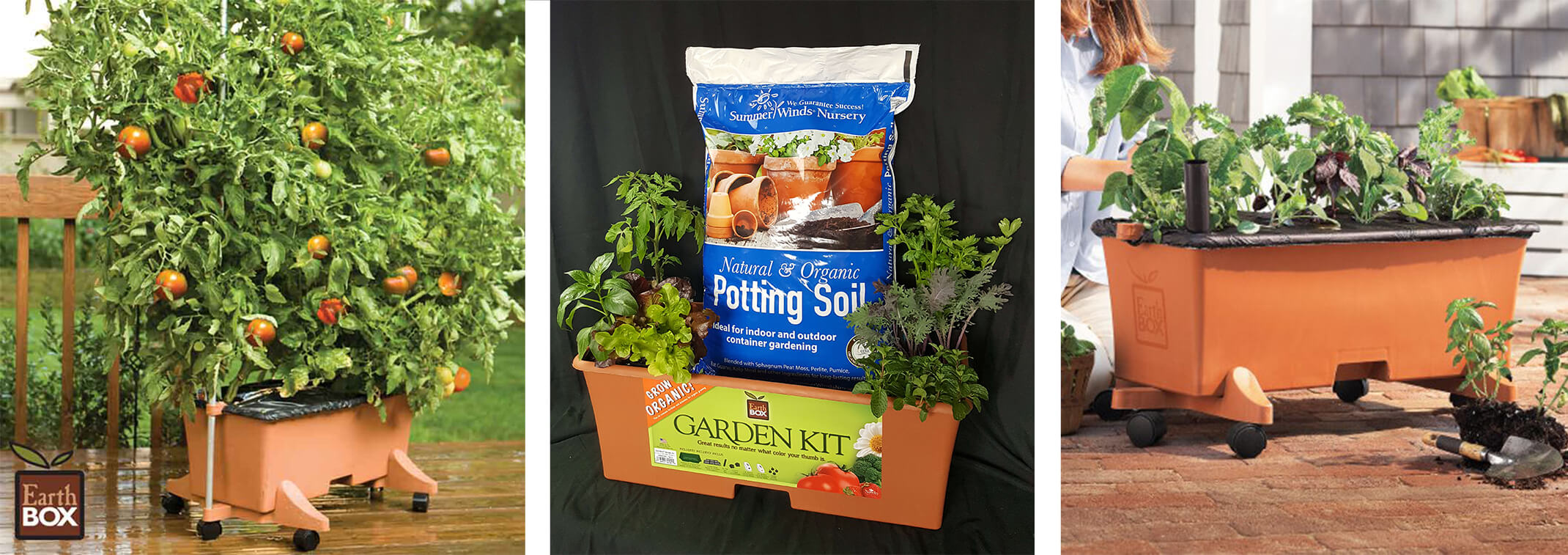 3 images: an EarthBox on a deck with a very large tomato plant growing in it; an EarthBox on display with SummerWinds Potting Soil and numerous plant starts; an EarthBox on a patio with a woman planting numerous plant starts in, near a grey and white house
