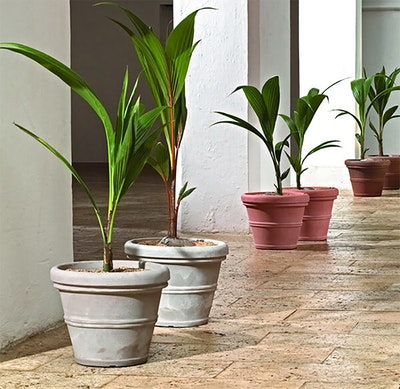 Crescent brunello pots with large houseplants planted inside lined up down an airy walkway