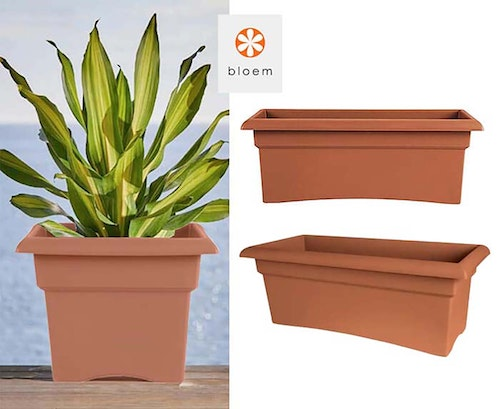 bloem veranda planter with a sansevieria planted in it and two showing the planter without