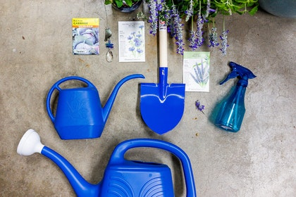 A variety of blue garedening tools, seed packages, a decorative hanging crystal, and purple plants -- all displayed with a concrete floor