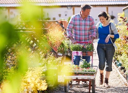 a couple walking through and shopping in a garden center