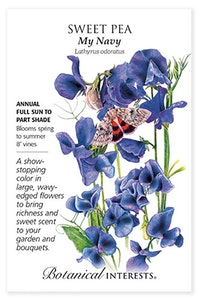 botanical interests sweet pea my navy seed packet