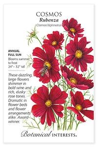 botanical interests cosmos rubenza  seed packet