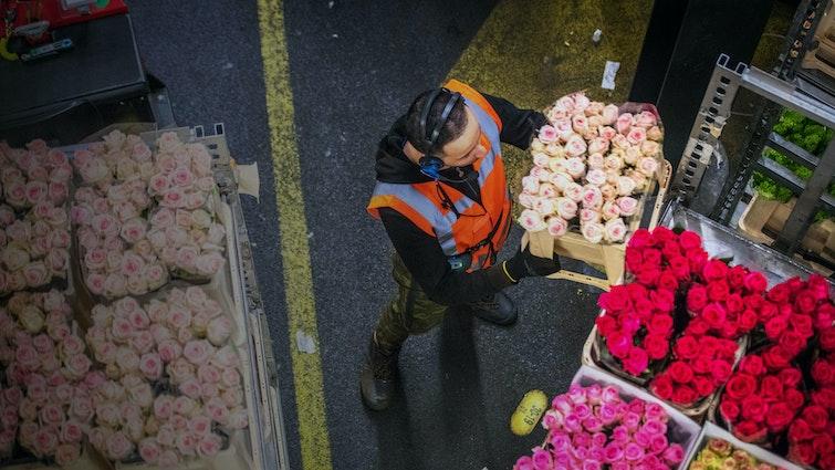 Man staat in een magazijn met een krat rozen