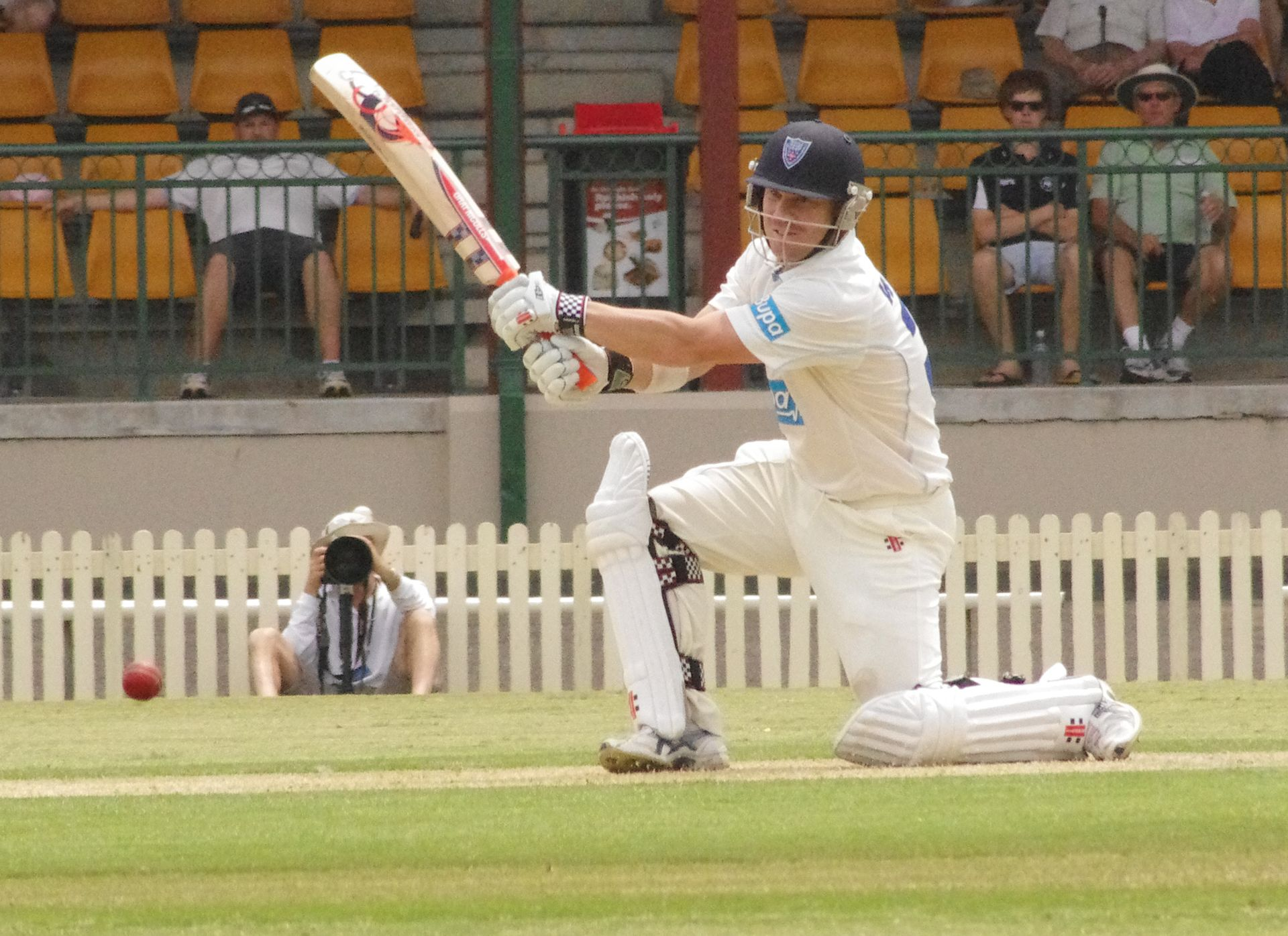 david warner australian cricket players in ipl