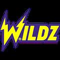 wildz casino india review