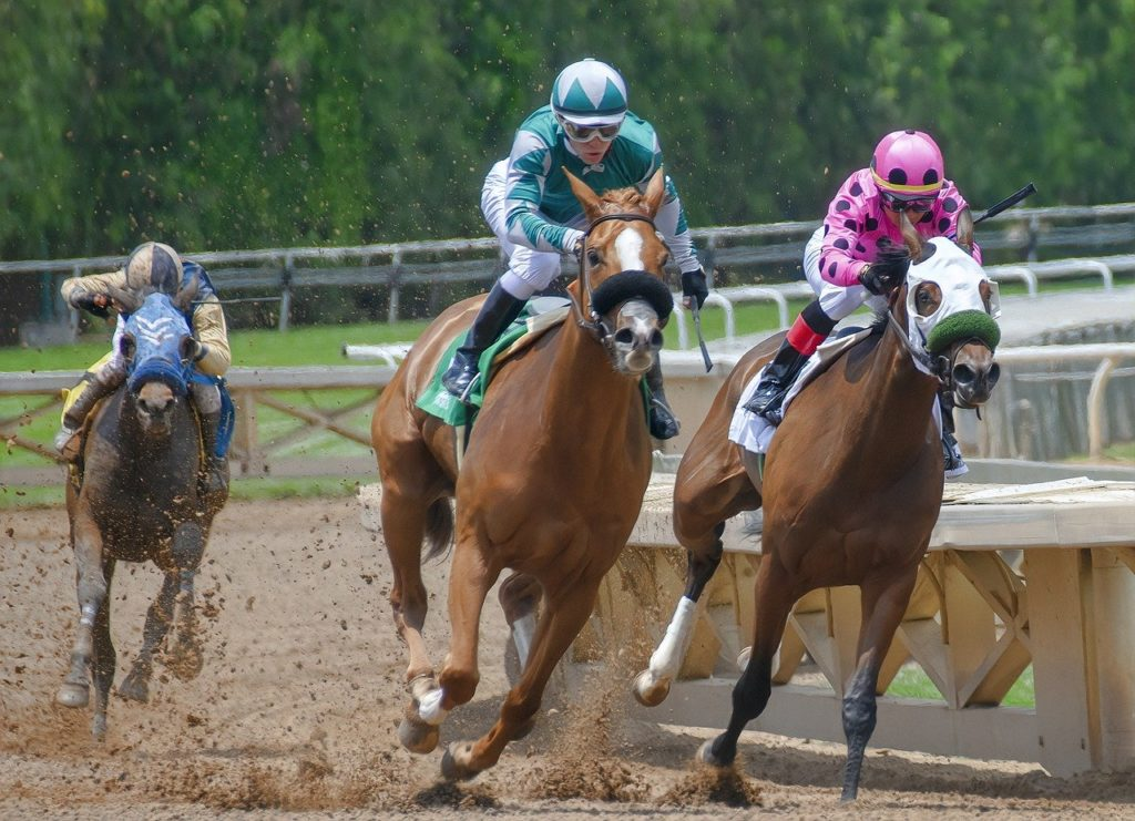 free indian horse racing tips