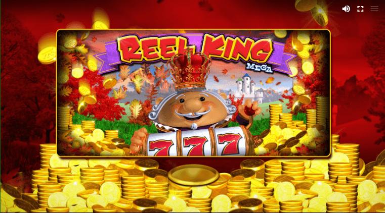 how to play Reel King Mega Slot machine