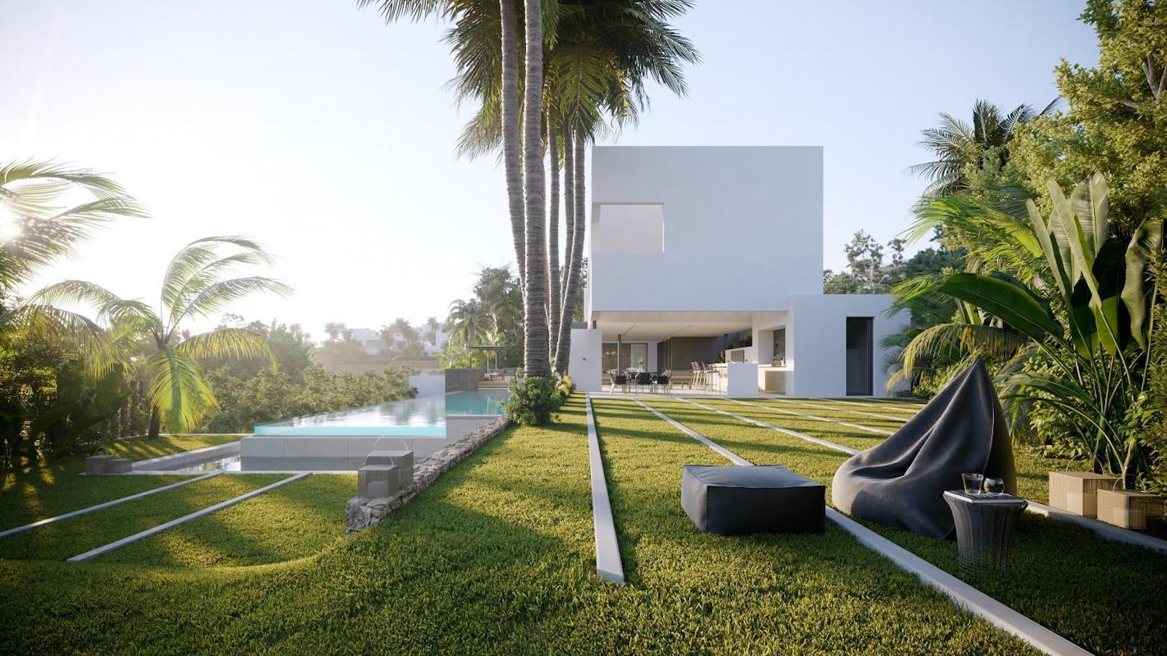 plant grass lawn