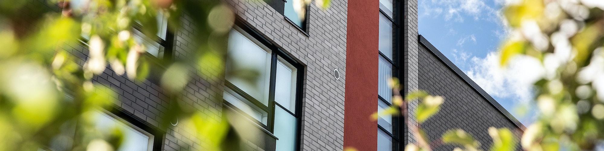 Vuokra-asunnon ikkuna puiden takana
