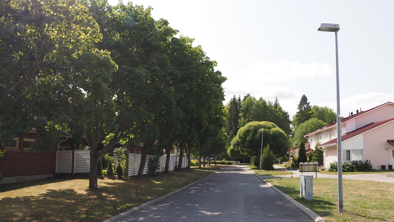 Kuvassa vuokrarivitalo vehreän kadun varrella Vaalassa