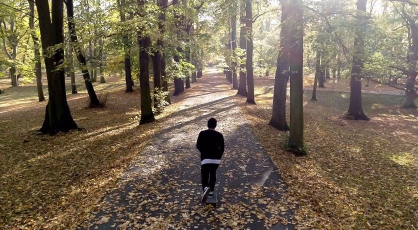 Cover Image for PETR KŘEPELKA. vegetation,path,tree,land,woodland,outdoors,person,grove,walking,trail