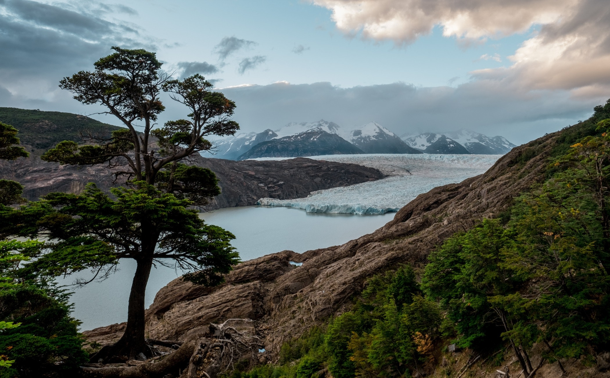 nature,tree,plant,outdoors,mountain,ice,promontory