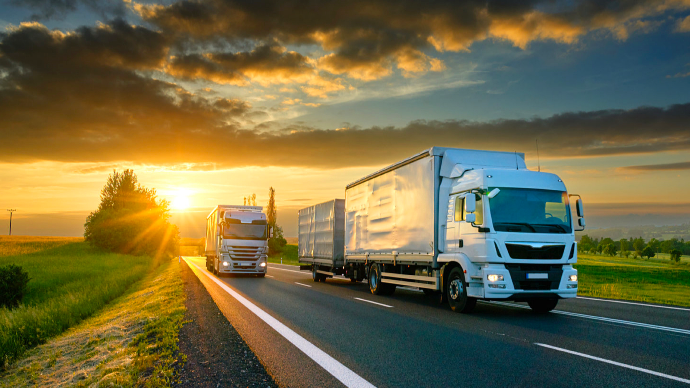 How can transport and logistics businesses cut costs?
