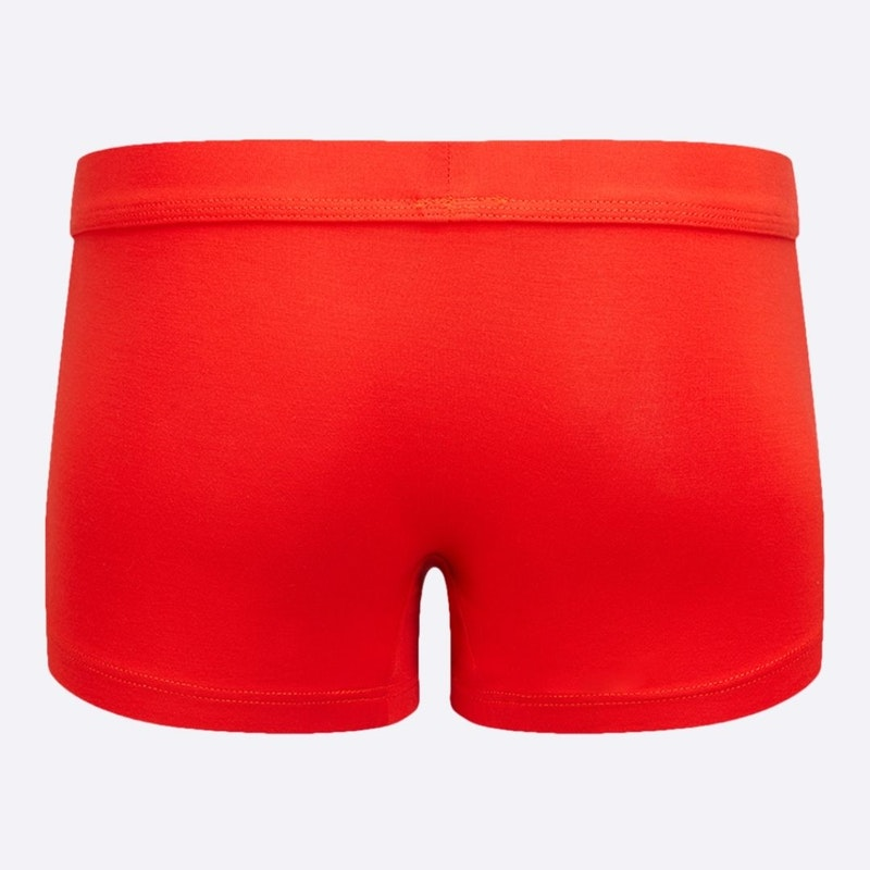 The Must-have Trunk Molten Lava Back
