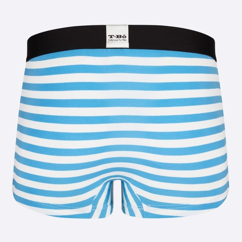 The Limited Edition The Ballsy Norse Blue Stripes Trunk for men in the USA and Canada