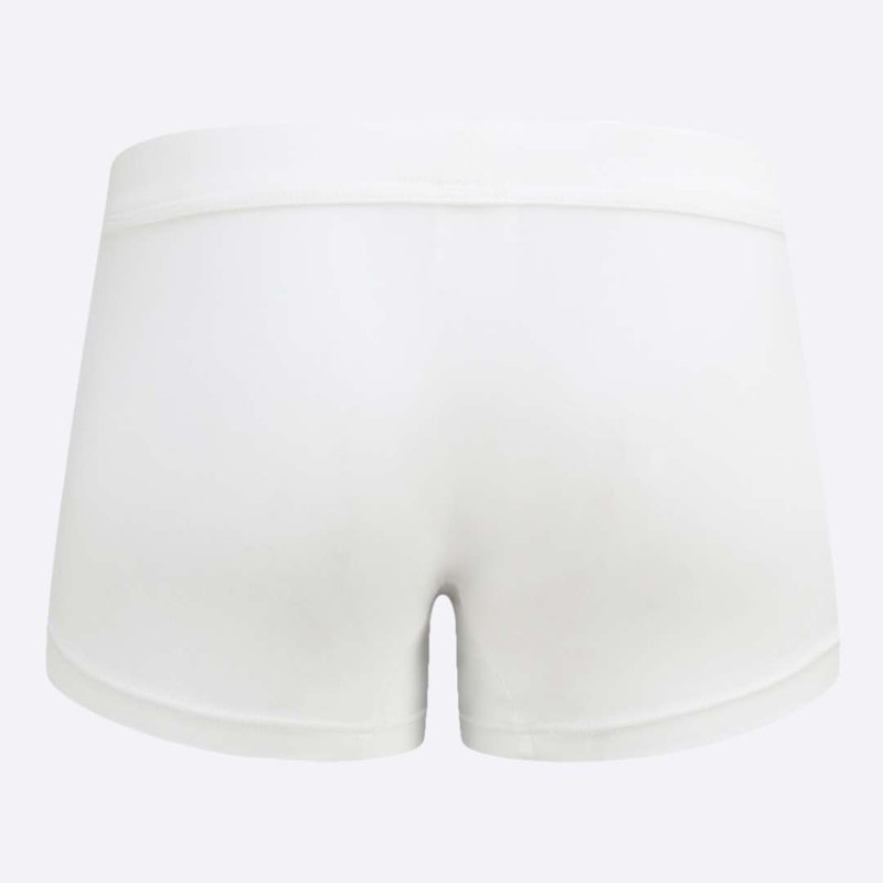 The Must-have Trunk White Back