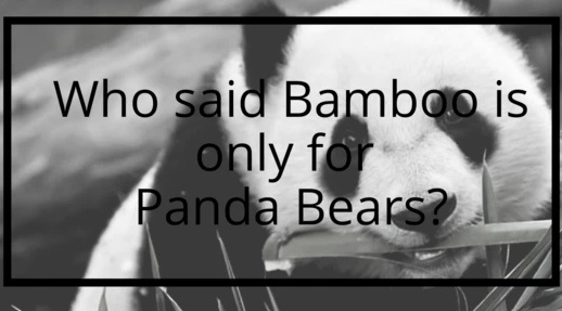 Who said Bamboo is only for Panda Bears