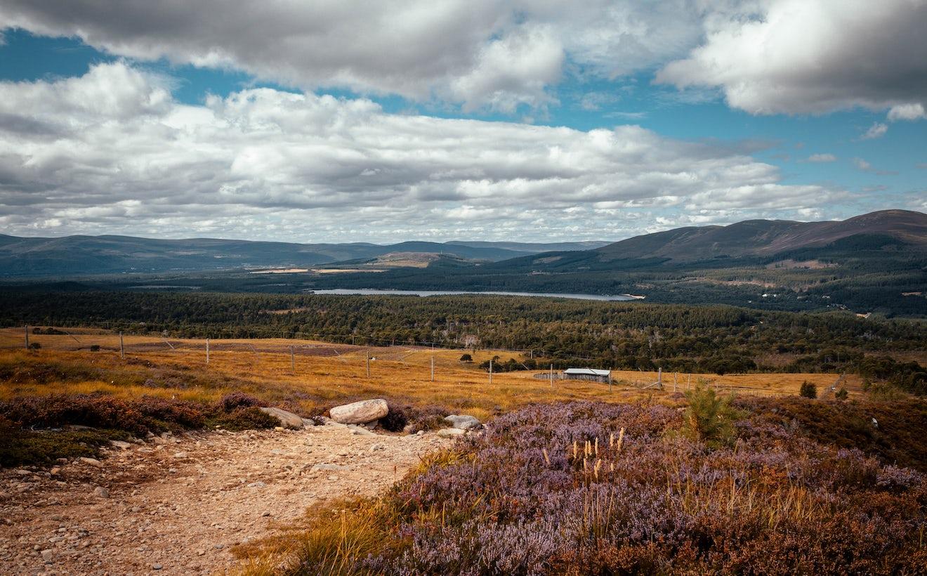 Aviemore Landscape