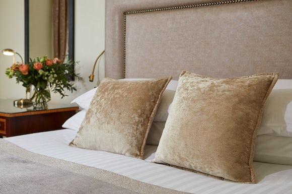 Standard Double Cushion
