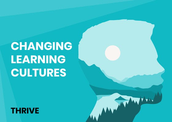 Changing learning cultures