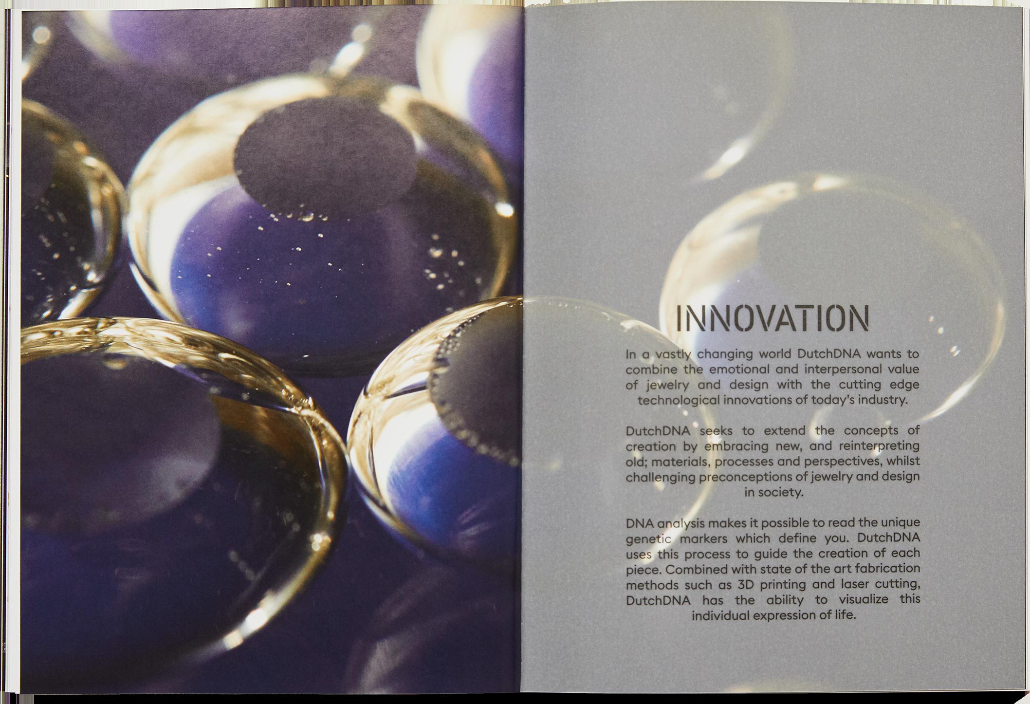 Chapter innovation catalog