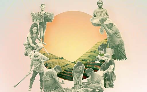 Agriculture: BIC underscores role of farmers in policymaking