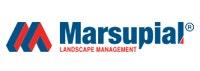 Marsupial Landscape