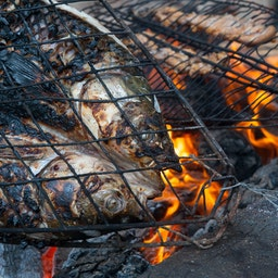 Photo taken on Nov. 3, 2018 showing grilled fish known as Masgouf cooked over an open fire in the southern marshes of Iraq. (Photo via Getty Images)