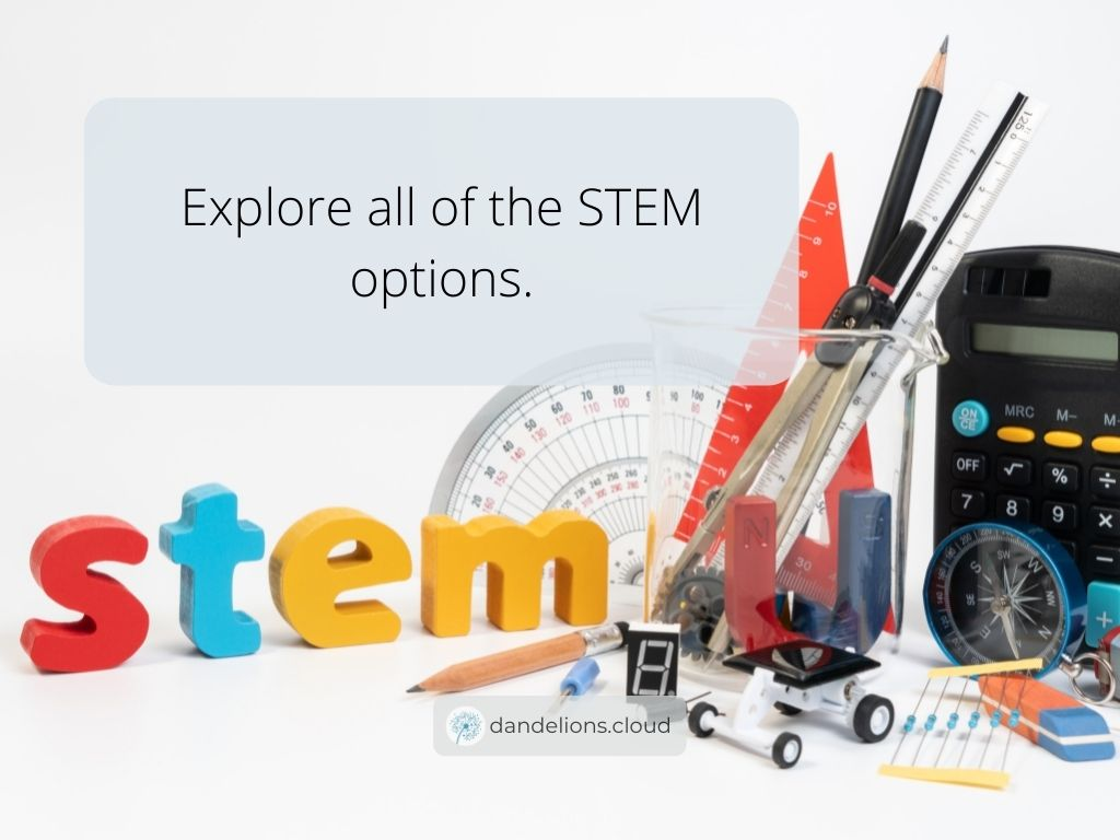 Explore all of the STEM options