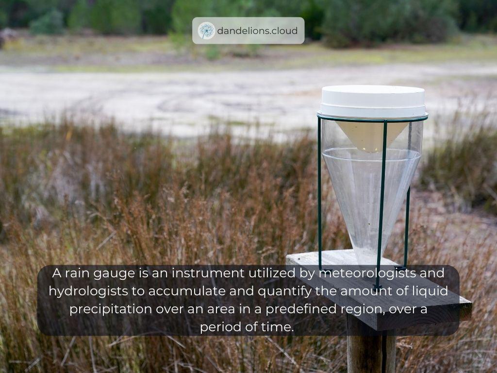 Definition of Rain Gauge Sensor