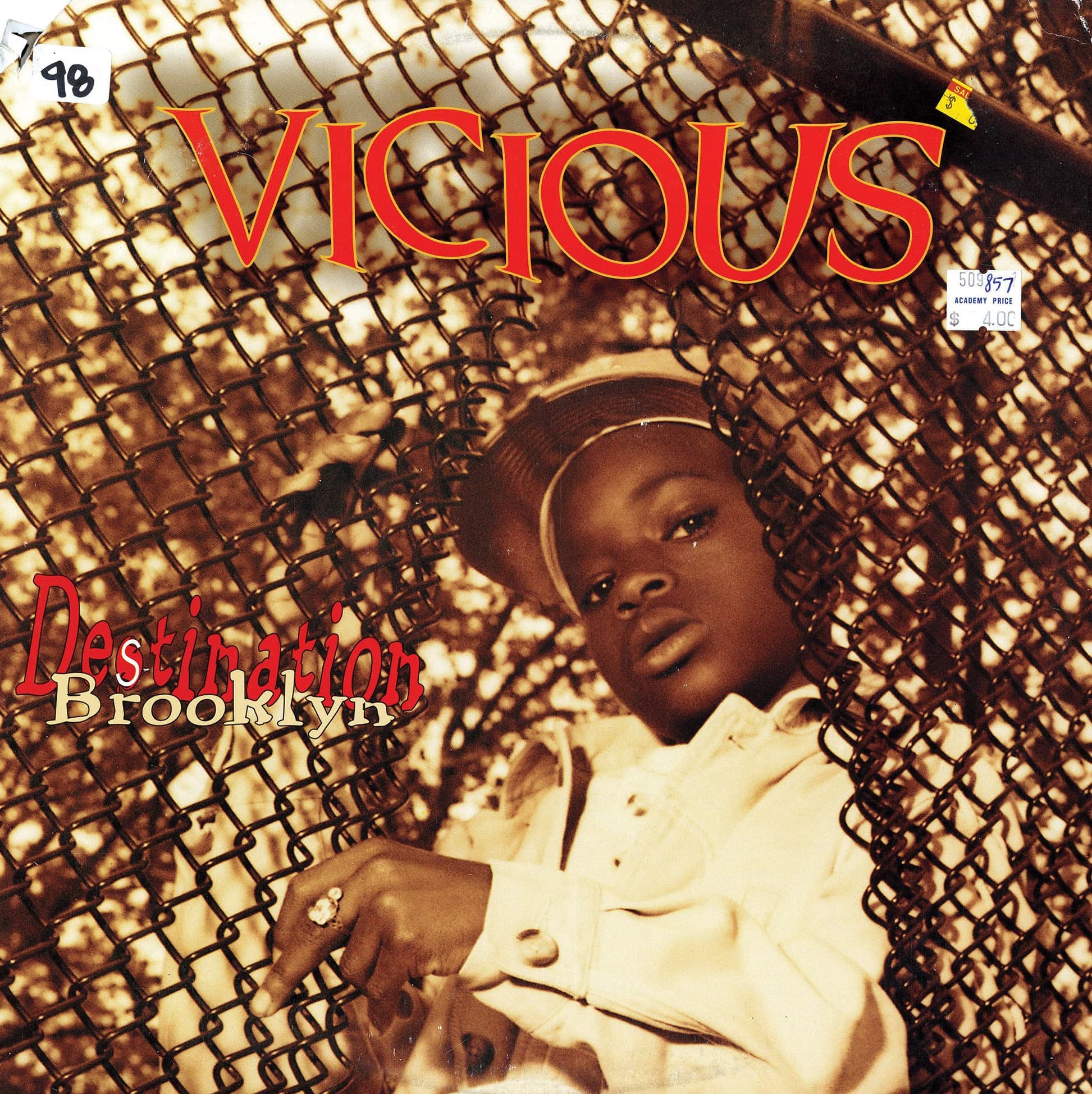 Vicious <i>Destination Brooklyn</i>