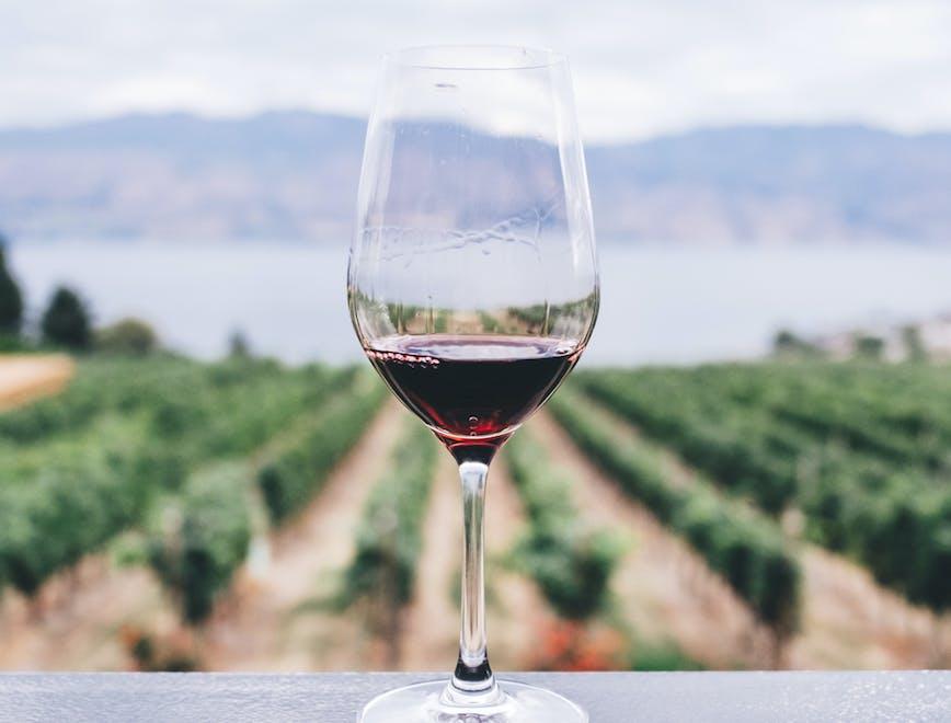 Le aste dei vini da non perdere nell'autunno 2018