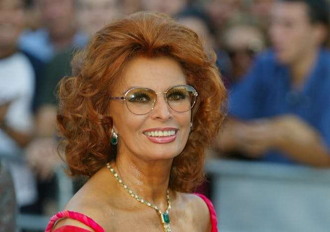 Nella foto Un ritratto di Sophia Loren