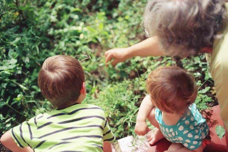 5 Hobbies to Start with Your Grandchildren