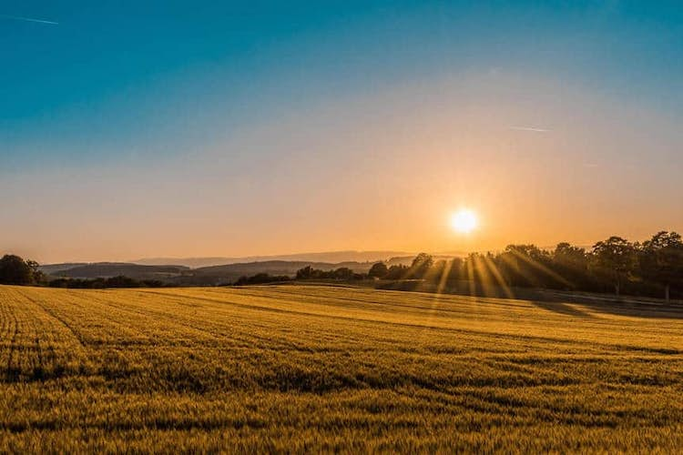 Buying a property in the country in the time of Covid
