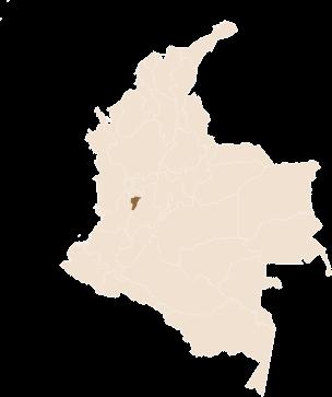 pin Café San Alberto region Quindio, Colombia in Colombia