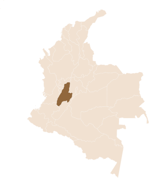 pin La Gaitania region Planadas, Tolima in Colombia
