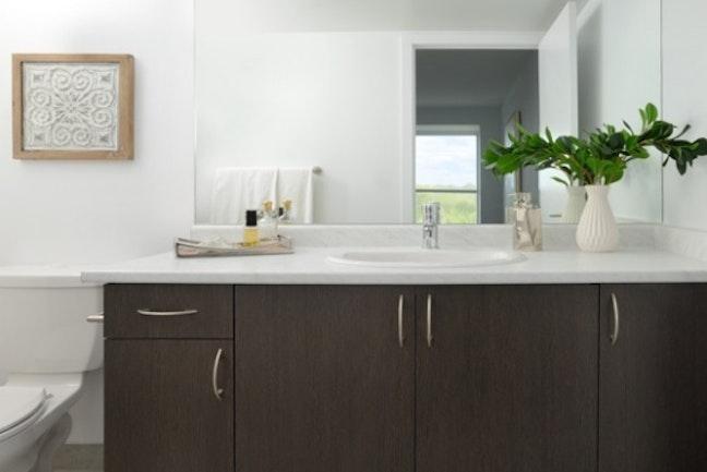 Bathroom Counter View